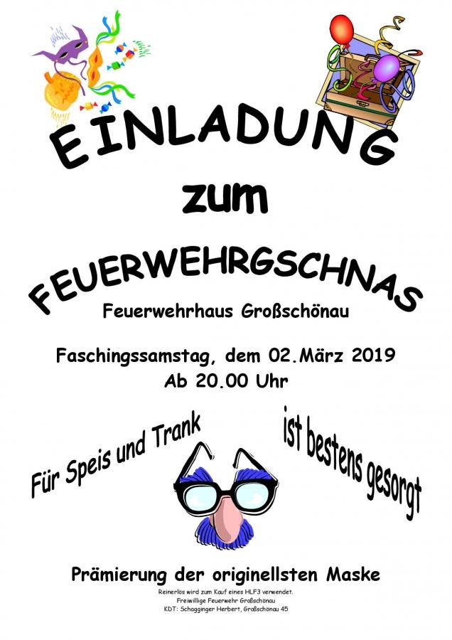 FW Gschnas 020319